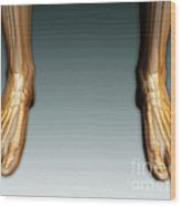 Conceptual Image Of Human Legs And Feet Wood Print