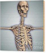 Conceptual Image Of Human Rib Cage Wood Print