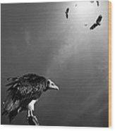 Conceptual - Vultures Awaiting Wood Print