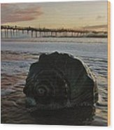 Conch Shell And Pier 2 10/17 Wood Print