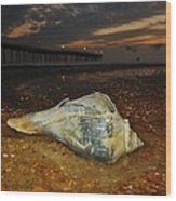 Conch Shell And Pier Predawn 2 10/18 Wood Print