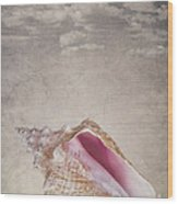 Conch Shell On Vintage Background Wood Print