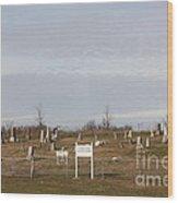 Concord Cemetery Wood Print