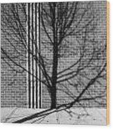 Concrete Tree II Wood Print