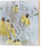 Coneflower And Bee 1  Wood Print
