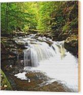 Conestoga Falls Wood Print