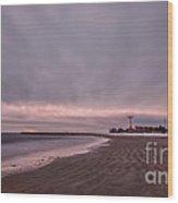Coney Island Bound Wood Print by Evelina Kremsdorf