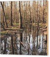 Congaree Reflections Wood Print