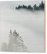 Conifa And Fog Deception Pass Washington Wood Print