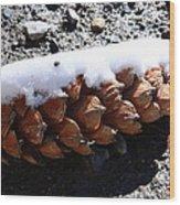 Pine Cone Wood Print