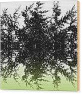 Conifer Lime Wood Print