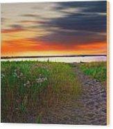 Conimicut Point Beach Rhode Island Wood Print