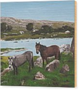 Connemara Ponies Wood Print