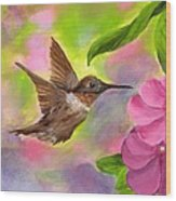 Connie's Hummingbird Wood Print