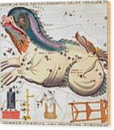 Constellation: Cetus Wood Print