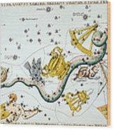 Constellation: Hydra Wood Print