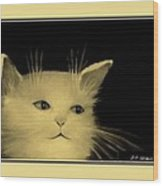 Contemplative Cat   No 5 Wood Print