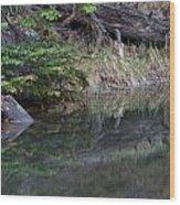 Continental Divide Pond Wood Print