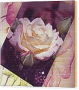 Continuation From Print To Photo Of White Rose Wood Print