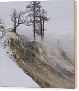 Contrast Wood Print by Yvette Pichette