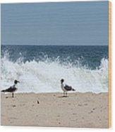 Conversation On The Beach Wood Print