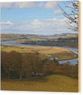 Conwy River Wood Print