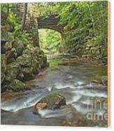 Cook Forest Stream Under The Bridge Wood Print
