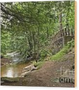 Cook Forest Toms Run Steps Wood Print