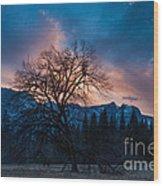 Cooks Meadow Oak At Sunset Wood Print