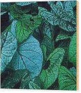 Cool Leafy Green Wood Print