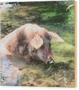Cool Pig Wood Print