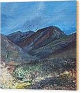 Coolin From Sligachan - Skye Wood Print