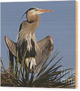 Great Blue Heron Air Conditioning Wood Print
