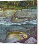 Coolwaters Rainbow Trout Wood Print by Jon Q Wright
