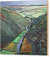 Coombe Valley Gate, Exmoor, 2009 Acrylic On Canvas Wood Print