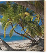 Cooper Island Wood Print