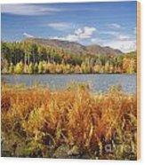 Cooper Lake Wood Print