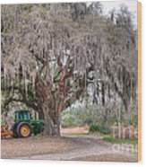 Coosaw Cross Roads With Live Oak Wood Print