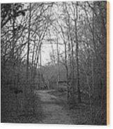 Coot Creek Wood Print