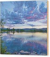 Coot Lake View Wood Print