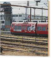 Copenhagen Commuter Train Wood Print