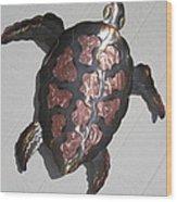 Copper Steel Turtle Wall Sculpture Wood Print