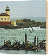 Coquille River Lighthouse And Birds Wood Print