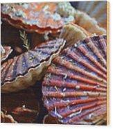 Coquilles Saint Jaques Wood Print