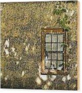 Coquina Door And Window Db Wood Print