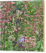 Coral Bells And Irises Wood Print