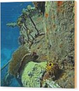 Coral Growth On A Ship Wreck Wood Print