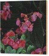Coral Petals Wood Print