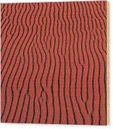 Coral Pink Sand Dunes State Park Ut Usa Wood Print