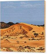 Coral Pink Sand Dunes Utah Wood Print